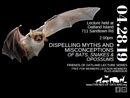 FOO Lecture Series: Myths & Misconceptions