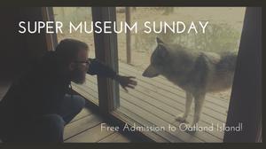 Annual Event Super Museum Sunday