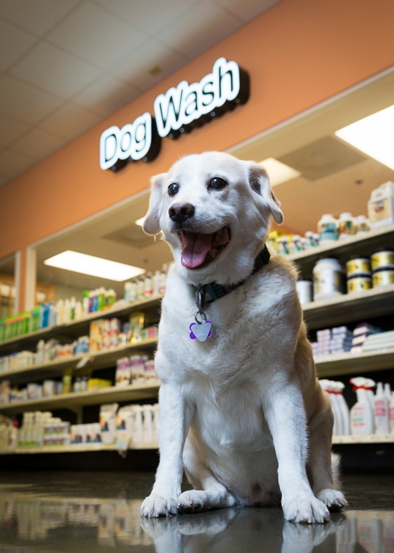 Photo Credit: Pet Product News