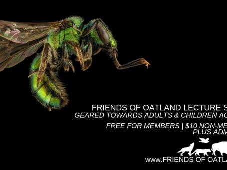 FOO Lecture Series: Native Plants & Pollinators