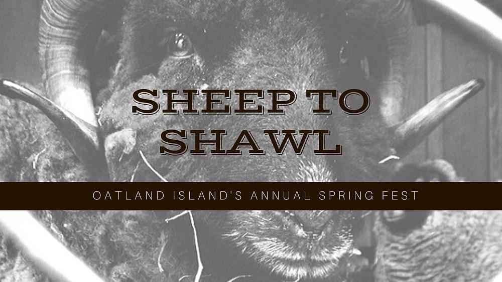 Oatland Island Annual Event Sheep to Shawl Festival