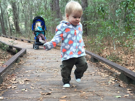 Toddler Tuesdays returns Jan. 12 @ Oatland Island Wildlife Center, Savannah