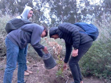 שכבה י' נוטעת עצים