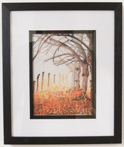 End of Autumn Trees