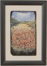 Poppies at Penshaw