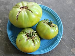 Spear's TN Green tomato at Bottle Hollow Farm.