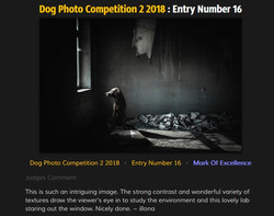Leica Photocompetition 07/2018