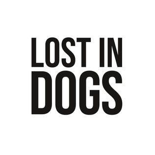 Lost in Dogs (Wortmarke).jpg