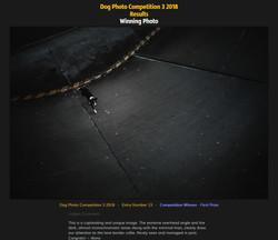 1. Platz Leica Photocompetition