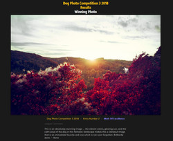 Leica Photocompetition 08/2018