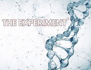 Experiment Logo.jpg