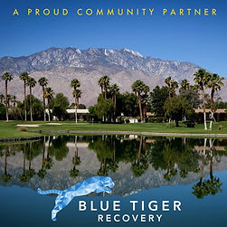 Blue Tiger Recovery - Palm Springs.jpg