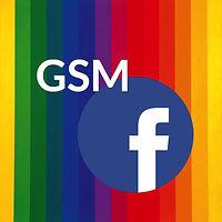 GSM%20Facebook%20Icon_edited.jpg