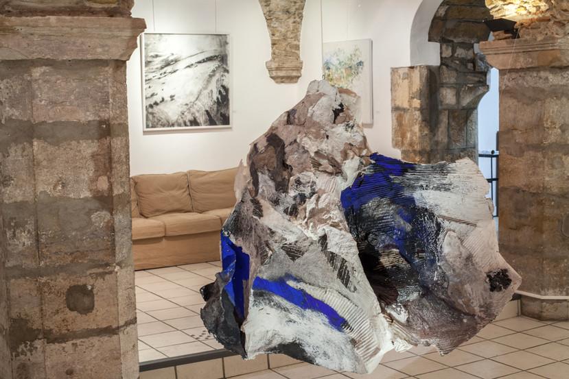 Projet Nature_S galerie l'oeil écoute Lyon avec Marie-France Chevalier et Jean-Baptiste Cleyet 2020/2021