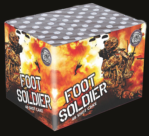 Foot Soldier  48 Shot Cake
