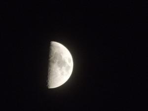 Beginner's Lesson: Moon Phases & Fertility