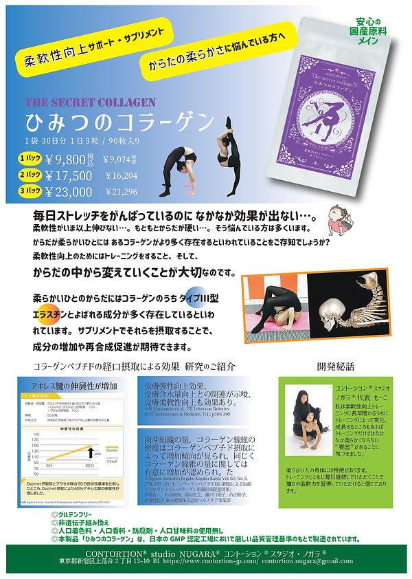 chirashi01mini_supli_page-0001.jpg