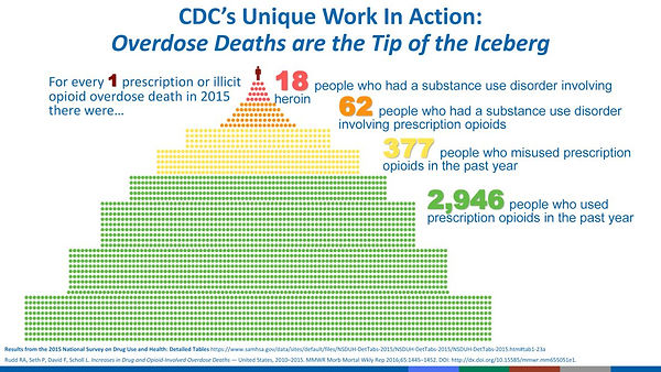 overdose deaths are tip of the iceburg 2