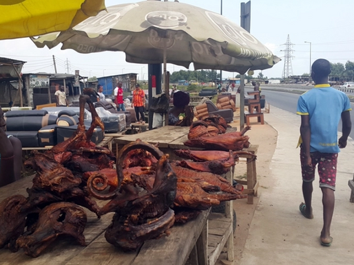 Drivers of bushmeat hunting and perception of zoonoses among wildlife hunters and traders in Nigeria