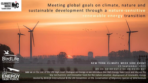 23 September 2021 - Energy Task Force, Climate Week NYC event