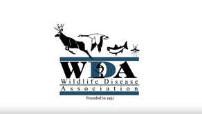 Participating in a Wildlife Disease Association (WDA) Committee