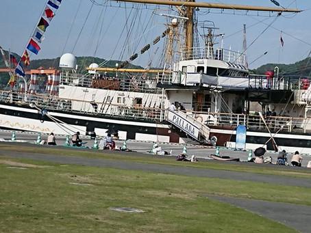「長崎帆船まつり 新鮮市」に出店しております❣️