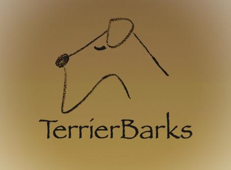 テリアバークスの新しい音楽リリーススタイルを始めるにあたって(奥寺)
