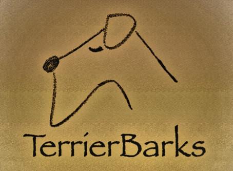 2020年5月15日より、テリアバークスの音楽をリリースする新しいスタイルが本格的にスタート!