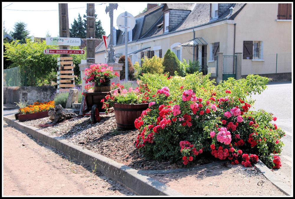 (10)31 fleurissement 11 07 2015 008(1000)