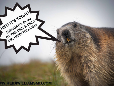 HOLY GROUNDHOG'S DAY!  Dr. William's Tuesday's Blog