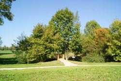 espace de Vienne 6.jpg