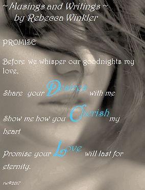 Website PROMISE.JPG