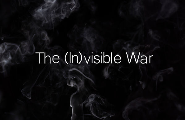 The (In)visible War