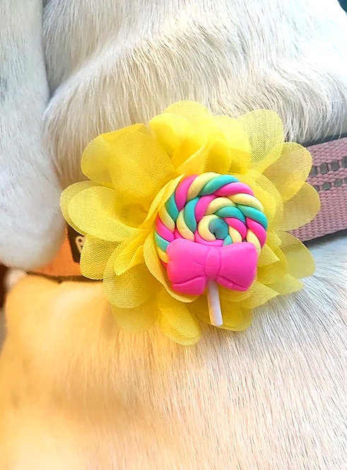 Interchangeable Lollipop & Popsicle  Flower Set- for dog collar