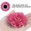 Thumbnail: Interchangeable Strawberry & Popsicle Flower Set- for dog collar