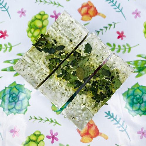 Minty Moringa Soap