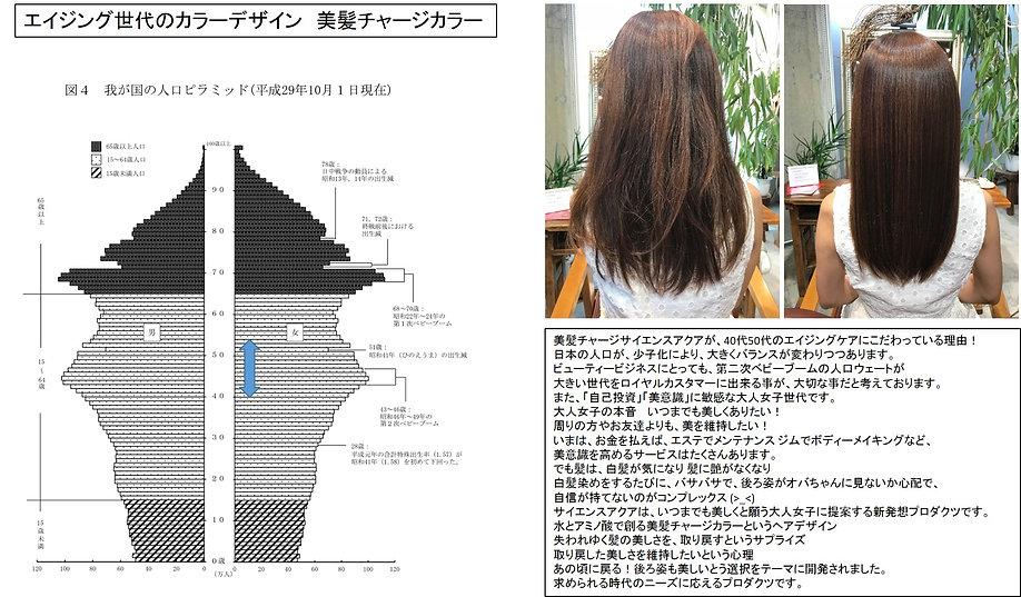 エイジング世代のカラーデザイン.jpg
