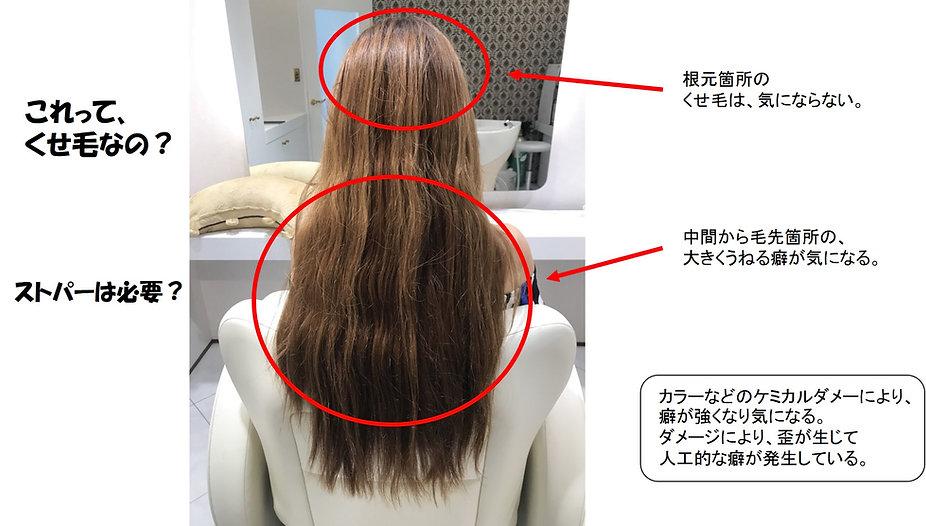 カラーダメージによるくせ毛 1.jpg