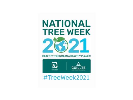 #treeweek2021