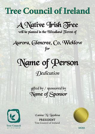 Sample certificate Aurora-1.png
