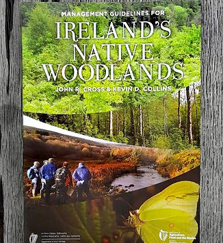 Irish Native Woodlands
