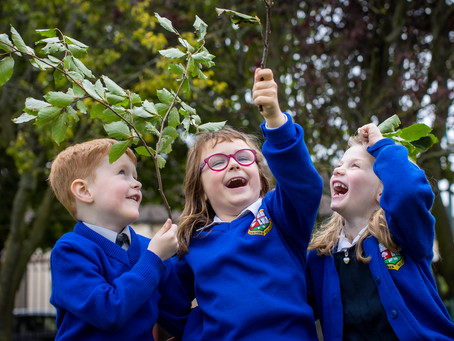 Tetra Pak Tree Day - Éanna joins Ray Darcy to explain all about it!