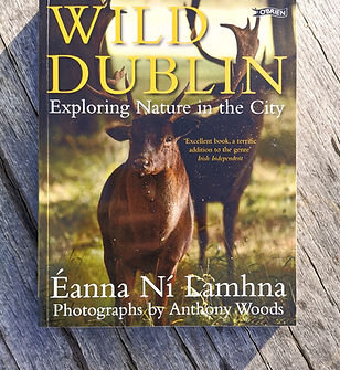 Wild Dublin