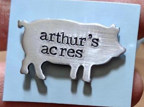 Custom engraved AAAS pig pin