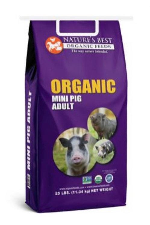 Organic PotBelly Gain