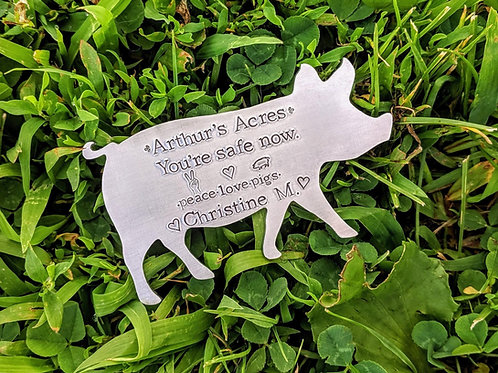 Engraved 3 inch pig medallion