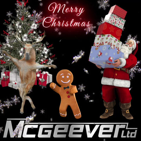 Merry Christmas from McGeever Ltd
