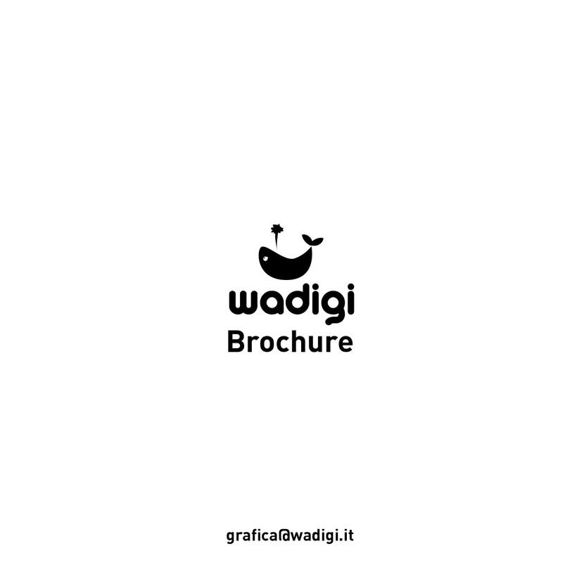 Brochure Wadigi