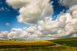 Rolling hills - Saarburg