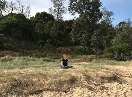 Why Meditate? (Part 2)